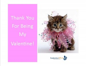 Valentines Cards 2017 CAT