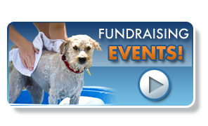 fundraising_events_button